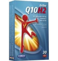 Q10 H2